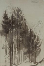 Hagener Wald
